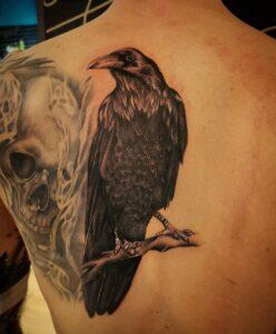 crow bird tattoo idea